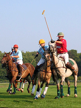 Newport Polo Opening Day
