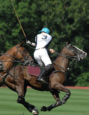 Newport Polo-USA vs Ireland