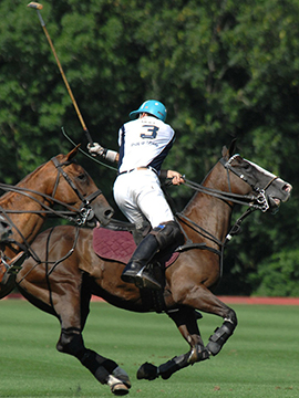 Newport Polo-Newport vs Philadelphia
