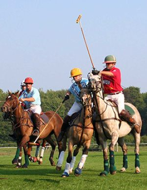 Opening Day Newport Polo