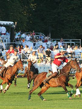 Newport Polo 2019: USA vs. England
